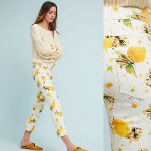 HTF NWT ANTHROPOLOGIE Lemon Grove Bootcut Jeans